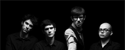 Wankin Noodles (band)